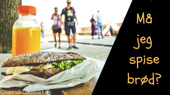 Skal jeg udelukke brød fra min kost? 🍞
